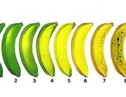 教你挑选最健康的香蕉