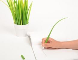 草叶子钢笔 除了写字也可做家居装饰